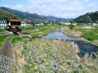 Kiryugawawataru08